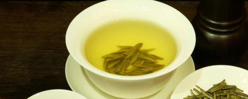 黄茶用什么茶具泡最好