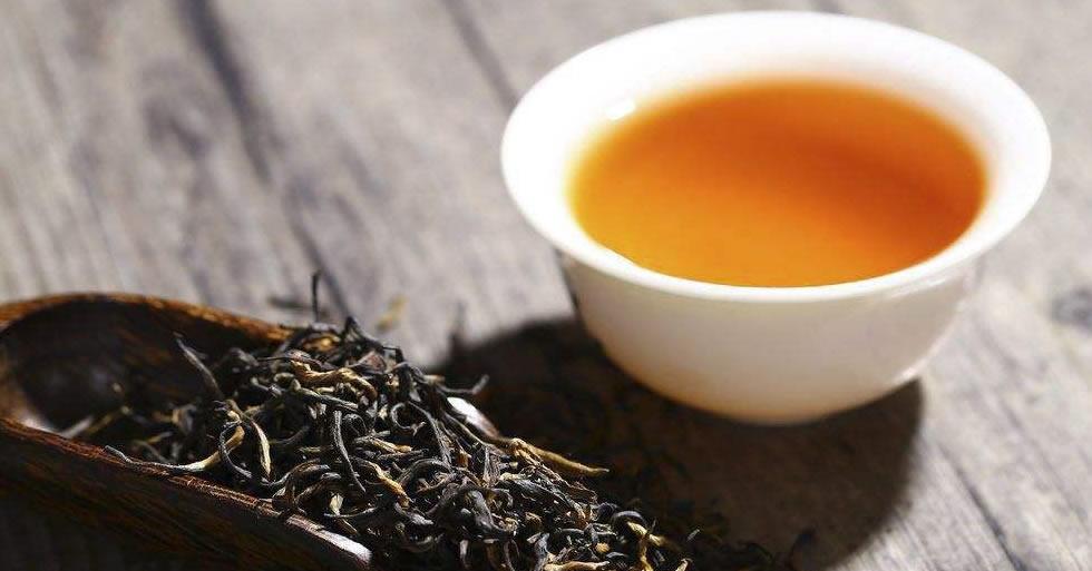 红茶是什么茶叶
