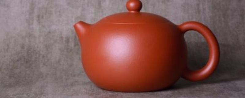 西施壶泡什么茶叶好
